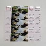 ナガシマスパーランド 特別入場券 湯あみの島 入館券 4枚セット